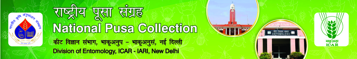 National Pusa Collection